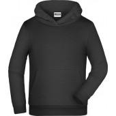James & Nicholson hoodie sweater grote maat 5XL div kleuren